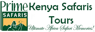 Kenya Safari & Tours